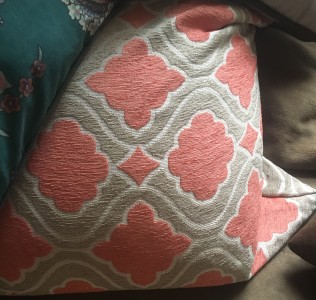 This is a picture of a pillow in my living room.