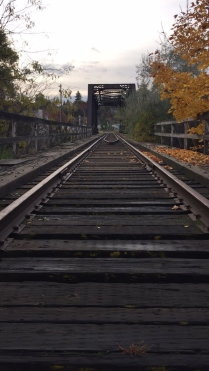 Line: Train Tracks/Railing taken in pullman